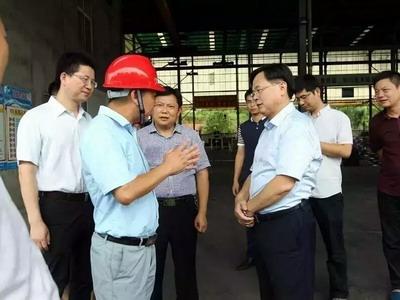 市委书记胡江萍等市委市政府领导到我公司调研